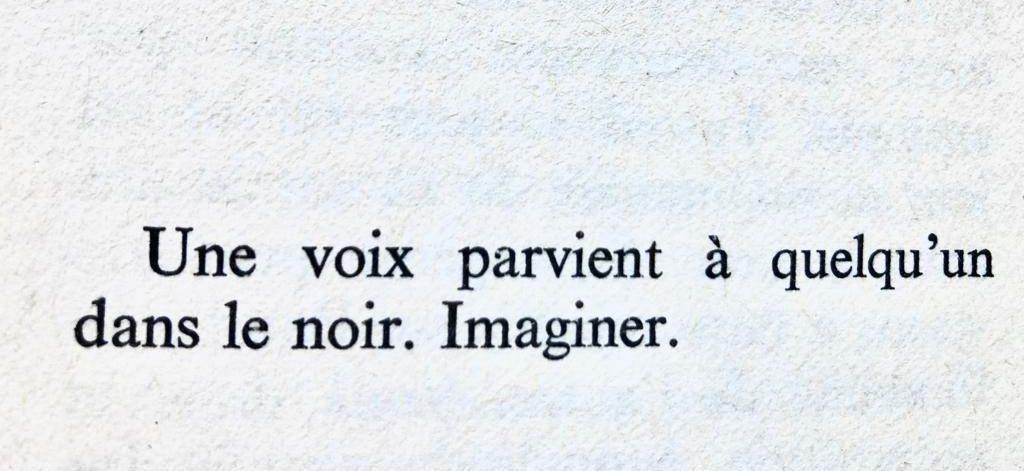 Chloé Larmet, Schizophonies théâtrales. Séparer l'inséparable : l'acteur et sa voix au miroir des technologies numériques
